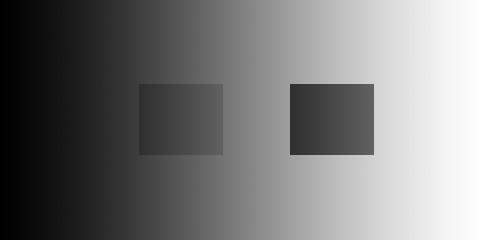20070610.jpg