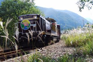 20071007-36.JPG