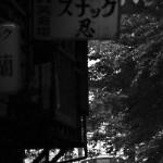 さくら新道の脇を湘南新宿ラインが駆け抜ける