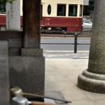 【Tokyo Train Story】神社から都電を眺めてみる