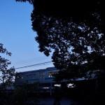 【Tokyo Train Story】夏の夕暮れ時の埼京線