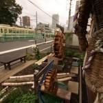 【Tokyo Train Story】草鞋と都電荒川線