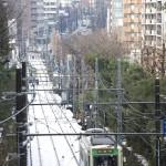 【Tokyo Train Story】真っ白な絨毯の上を行く都電荒川線