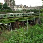 【Tokyo Train Story】山手渓谷