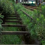 【Tokyo Train Story】昭和な東急世田谷線