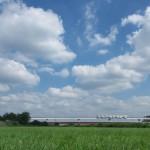 【Tokyo Train Story】多摩都市モノレールの夏風景