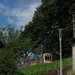 【Tokyo Train Story】坂を駆け上がる京王動物園線