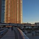 【Tokyo Train Story】夕暮れ時の散歩道(東京モノレール)