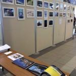 千葉モノレールアートプロジェクトが本日開幕しました!