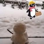 宮城県内の某温泉地で陸羽東線を走るリゾートみのりを撮影してみた!