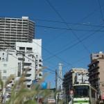 【Tokyo Train Story】ねこじゃらしがある都電荒川線沿線風景