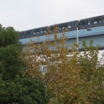 【Tokyo Train Story】ゆりかもめ沿線の黄葉