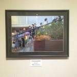 【御礼】千駄木のぎゃらりーKnulpでの写真展「ねこ展」が終了しました