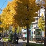 【Tokyo Train Story】銀杏並木(都電荒川線)