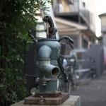 今週の365 DAYS OF TOKYO(1月6日~1月12日) ~ 雑司が谷と西日暮里の年末風景