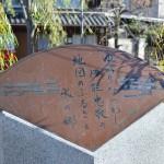 小野川沿いにある蔵から川を眺めてみる 冬の青春18きっぷの旅 千葉県佐原編 その5