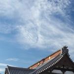 今週の365 DAYS OF TOKYO(1月13日~1月19日) ~ 谷中と根津の冬の路地裏