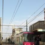 【Tokyo Train Story】青い空とピンクの都電
