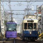 【Tokyo Train Story】レトロ風都電車両と紫の都電の並び