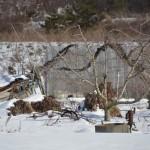 長野電鉄屋代線廃線跡付近の雪と山の景色の中にある井戸ポンプ群 冬の岐阜長野温泉巡りの旅 その27