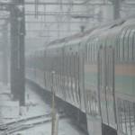 【Tokyo Train Story】雪の中を走る湘南新宿ライン