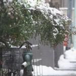 平成26年(2014年)2月14日 東京にまた大雪が降ったということで東京雪景色を撮影してきた!