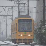 【Tokyo Train Story】雪の日の黄色い都電荒川線