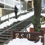 東京雪景色2014 谷中銀座と谷中のお寺さんの雪がある風景 その2