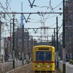 【Tokyo Train Story】東京スカイツリーをバックにして走る都電あかおび号