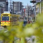 【Tokyo Train Story】都電あかおび号が走る光景も日常になってきた今日このごろ