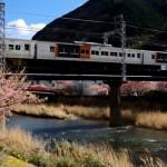 伊豆急行線を走る特急踊り子などを河津桜と一緒にPENTAX K-3で動画撮影してみた!