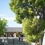 神楽坂の赤城神社下の路地裏風景 春の神楽坂路地裏散歩 その3