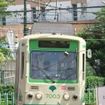 【Tokyo Train Story】都電荒川線が信号待ちをしているところを撮影する