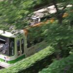 【Tokyo Train Story】豊かな緑の中を疾走する都電荒川線