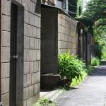 今週の365 DAYS OF TOKYO(7月22日~7月28日) ~ 谷中・上野の夏の始まり