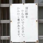 仙酔島で天然洞窟蒸し風呂がある江戸風呂を体験した! 広島県デスティネーションキャンペーンの旅 その12