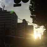 【Tokyo Train Story】夕暮れ時の都電荒川線沿線