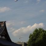 今週の365 DAYS OF TOKYO(9月16日~9月22日) ~ 夏の終わりの谷中路地裏散歩