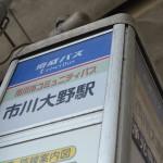 市川市動植物園の5頭のカピバラに会う! 夏の青春18きっぷの旅 たっぷり千葉県編 その1