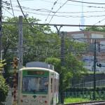 【Tokyo Train Story】東京スカイツリーを背景に走る都電荒川線