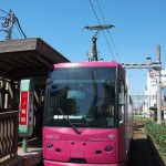 【Tokyo Train Story】ピンクの都電は青い空がよく似合う