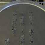 【Tokyo Train Story】啄木(上野駅地平ホームにて)