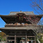 何から何までスケールの大きな建長寺を見学 冬の鎌倉散策 その6