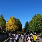 上野公園内の清水観音堂と黒門跡 秋の東京散歩 その2