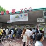 上野動物園でカピバラを見てきた リアルカピバラさん その1