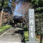 円覚寺の桂昌庵、三門、仏殿 冬の鎌倉散策 その2
