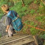 川苔山登山道の先に待つのは百尋の滝! 初秋の奥多摩トレックリングの旅 その6