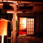 光と紅葉のコラボレーション 六義園紅葉散策 その5