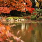 回遊式の庭園で和の雰囲気を楽しむ 旧古河庭園紅葉散策 その2