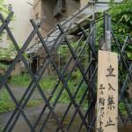 雨上がりの同潤会三ノ輪アパート 同潤会アパートシリーズ その7